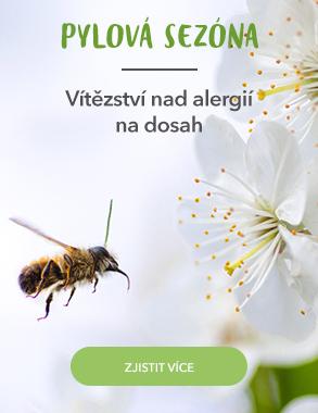 Pylová sezóna